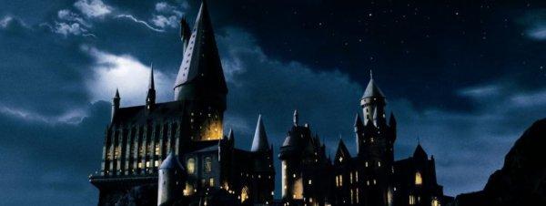 Hogwarts : tout un monde