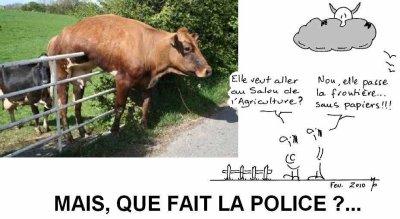 la  pauvre vache