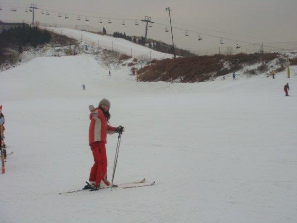 vive le ski