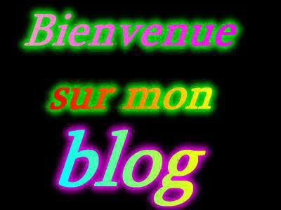 Bienvenue sur ce blog