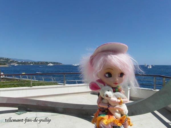 un Voyage a Monaco .