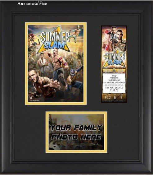 CM Punk Pas Dans L'Historique des Champs - Plaque SS - Punk vs Cena sur iTunes et WWE 12 - Finkel On Punky