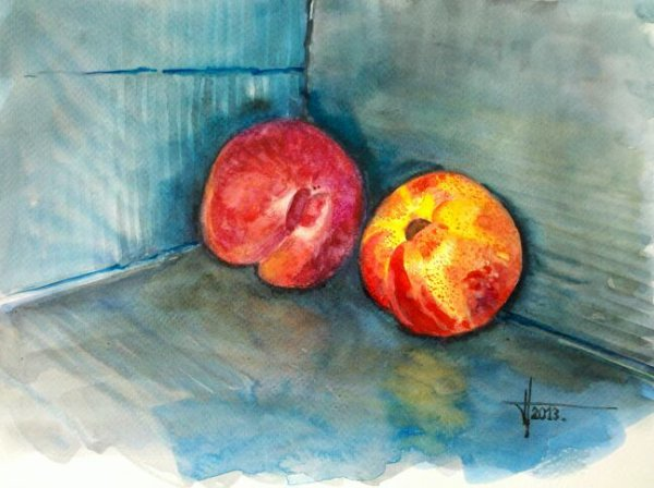 Aquarelle fruits