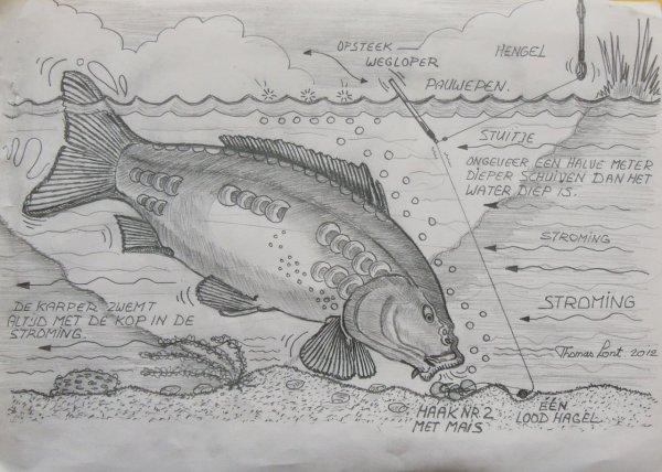 Pêche à la carpe avec un flotteur dans le ruisseau