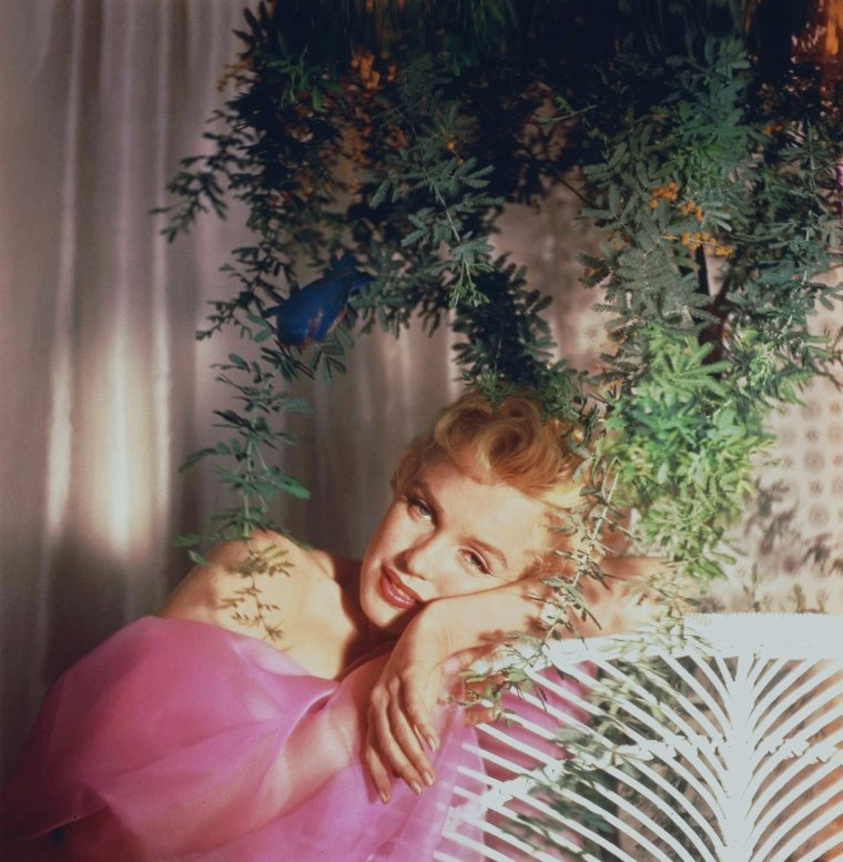 1956 / by Cecil BEATON