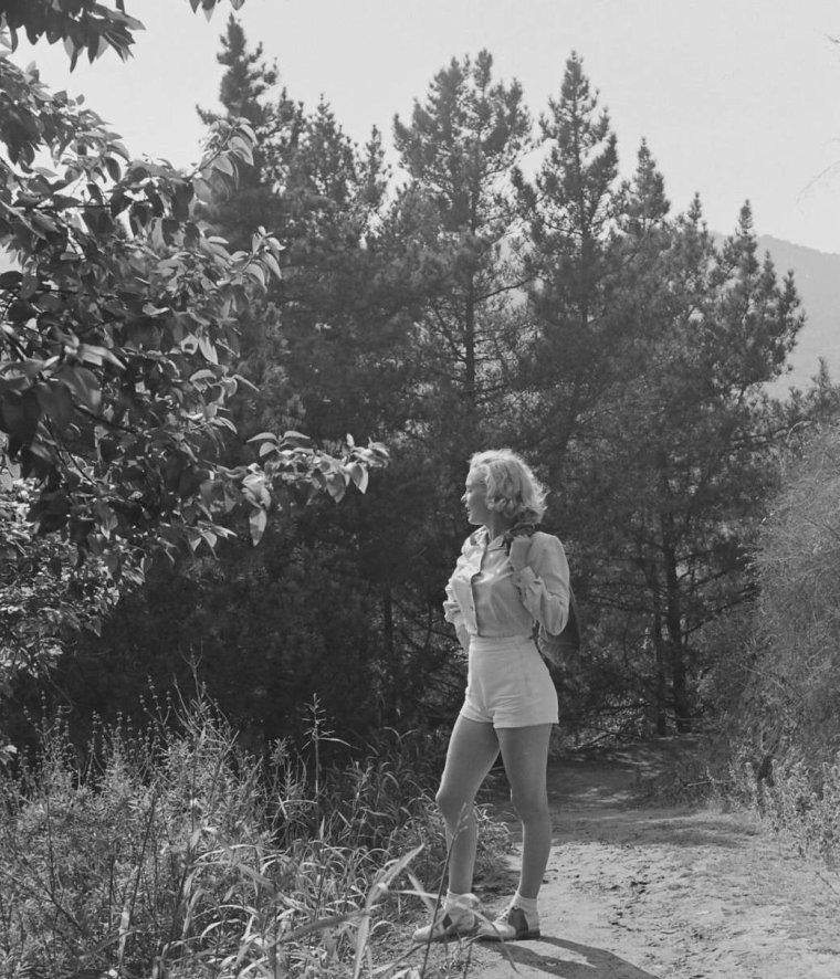 1950 / by Edward CLARK