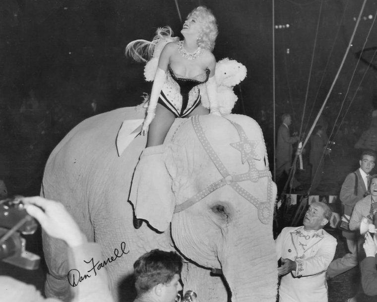 """1955 / Marilyn participe à la soirée de Mike TODD et """"The Ringling Brothers Circus"""" au """"Madison Square Garden"""" aux côtés de Milton BERLE en Monsieur LOYAL, pour récolter des fonds pour une association luttant contre l'arthrose... (part 2, voir TAG)."""
