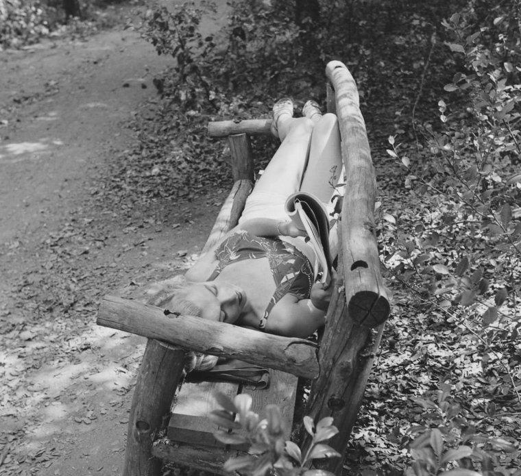 1950 / by Edward CLARK... ballade en forêt...