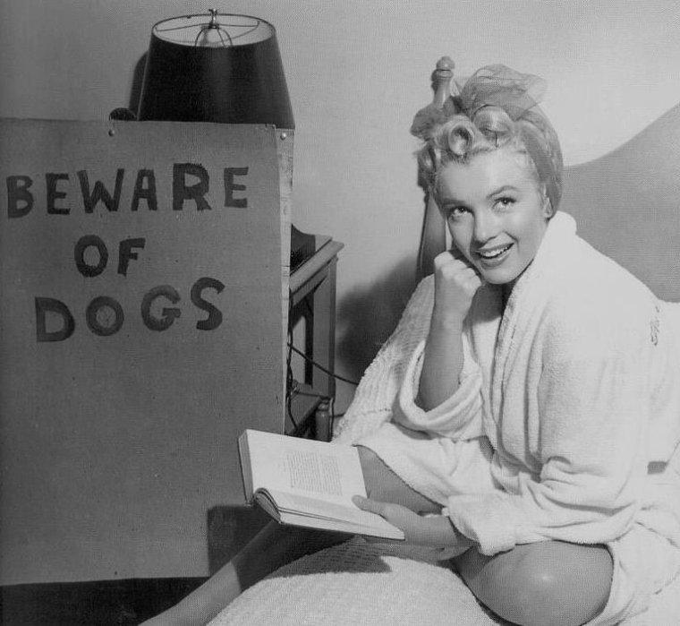 """1952 / by Jock CARROLL... Marilyn au Canada lors du tournage de """"Niagara"""", notamment dans sa chambre d'hôtel relisant le script du film."""