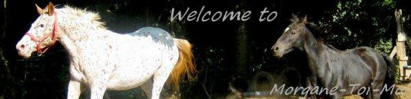 Bienvenu ^.^