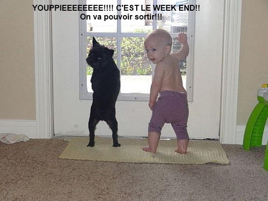 WEEK-END.....UN PEU D'HUMOUR!!!!  ET DU SOLEIL...ET SURCHARGER.