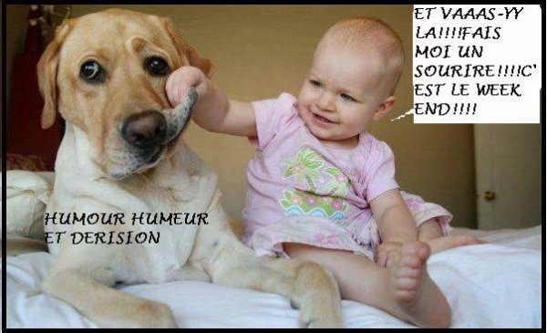 WEEK-END.....HUMOUR .........REFLEXION.