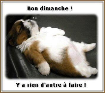 WEEK-END.....UN PEU D'HUMOUR!!!!..MEME QUE L'AUTRE...MDRR.
