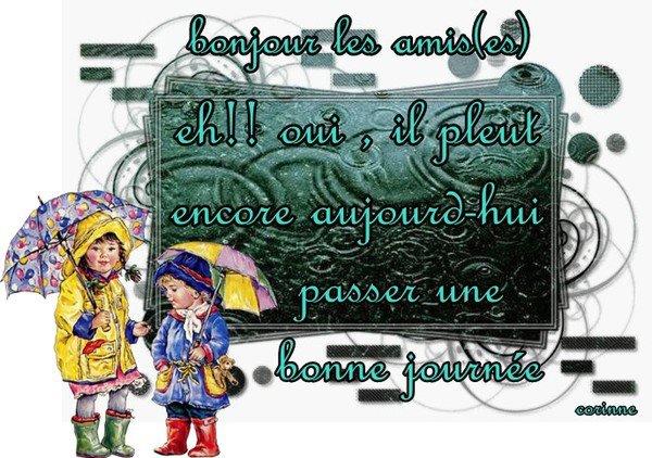 WEEK-END.....UN PEU D'HUMOUR!!!!    ET DE LA PLUIE.....ET DE LA PLUIE...ET...