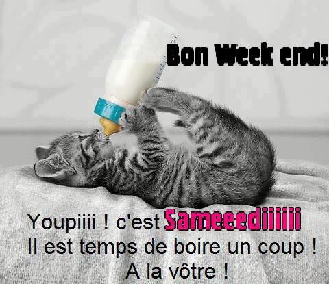 WEEK-END.....HUMOUR .........