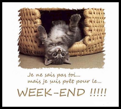 WEEK-END.....HUMOUR .........RECHERCHE 20 DEGRES (ANNONCE CE DIMANCHE)