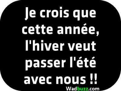 WEEK-END.....HUMOUR .........AVEC BEAUCOUP DE VENT!!!!!