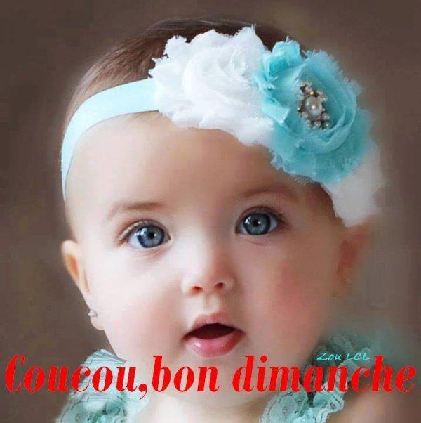 WEEK-END.....UN PEU D'HUMOUR!!!!    ET DE LA PLUIE.....