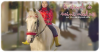 __________◊ Le cheval de Saint Nicolas_______________________________Ho-r-se___________________