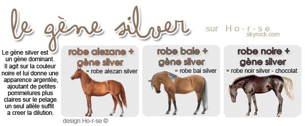 ___________◊ Le gène silver_____________!_____________________Ho-r-se_♥___________________