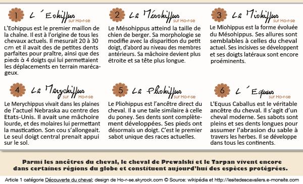 article1catégorie1