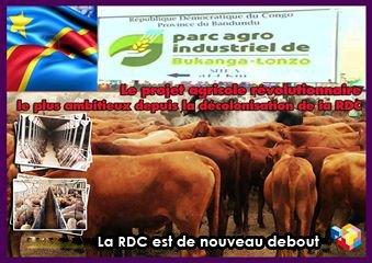 HISTOIRE DE LA NAISSANCE DU PARC AGRO ALIMENTAIRE DE BUKANGA-LONZO