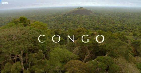 La révolution en RDC : PRINTEMPS ARABE OU PRINTEMPS NOIR ?