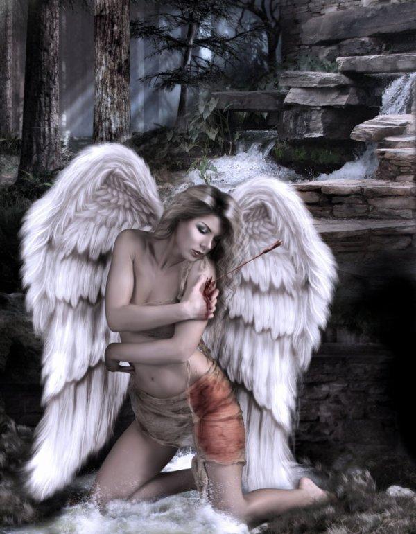 ange bléssé