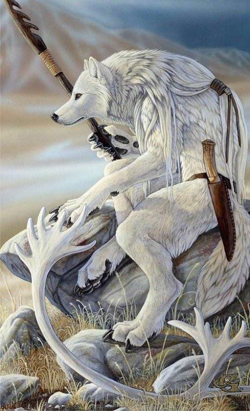 Loup garous blanc