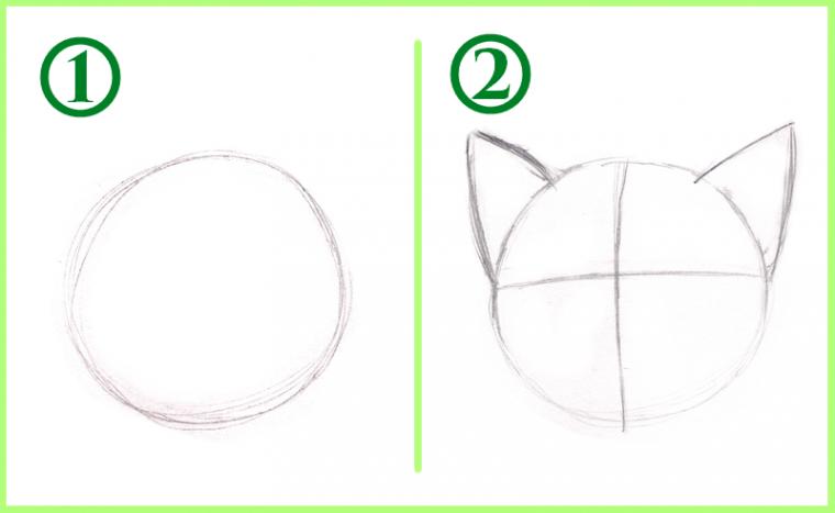 Tuto dessiner un chat - Dessiner un chat facilement ...