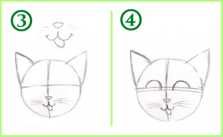 Tuto dessiner un chat - Tuto dessin facile ...