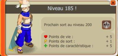 Nouveau Steuf pour le panda/up 185 // Obsi sympa :)