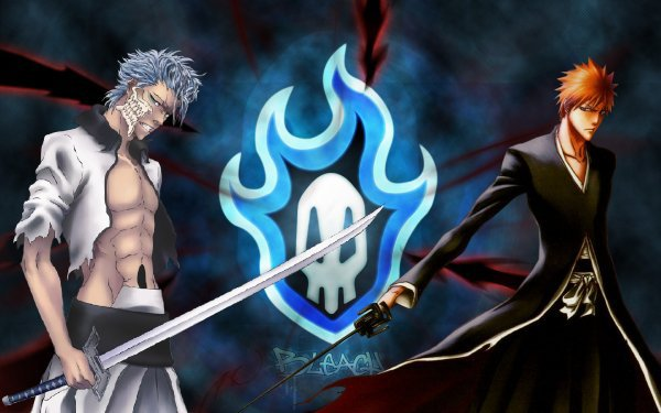 Feuille à Fanfiction : Double vie. - Bleach.
