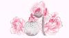 Feuille à Drabble : Un doux parfum. - Fullmetal Alchemist.
