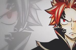 Feuille à One Shot : The E.N.D. - Fairy Tail.