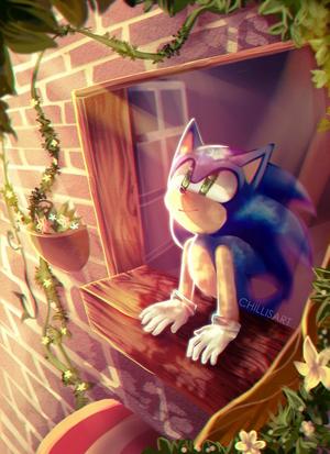 Passion Sonic ✨