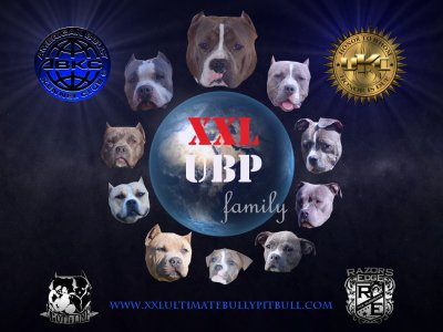 XXL UBP Family