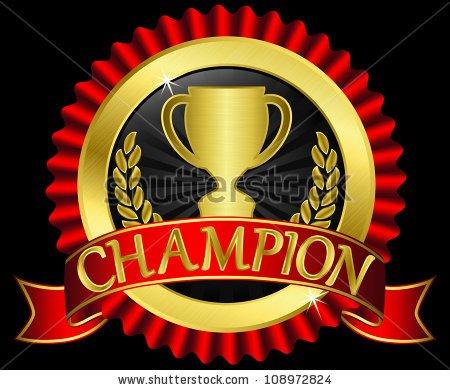 LE MP RACING CHAMPION 1ER  ET 2EME AU TGO 2014 EN PROTO VARIO