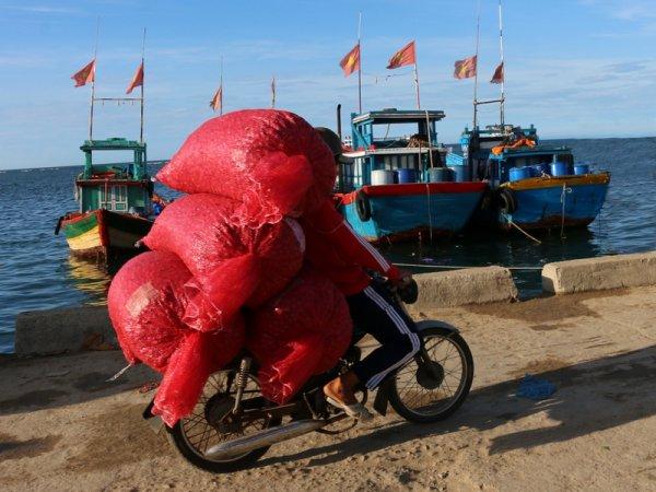 Bienvenue en Hồ-vergne.