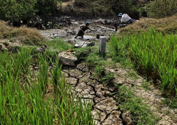 Réc'Hồ-ffement climatique.