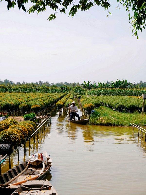 Exp'Hồ de fleurs.