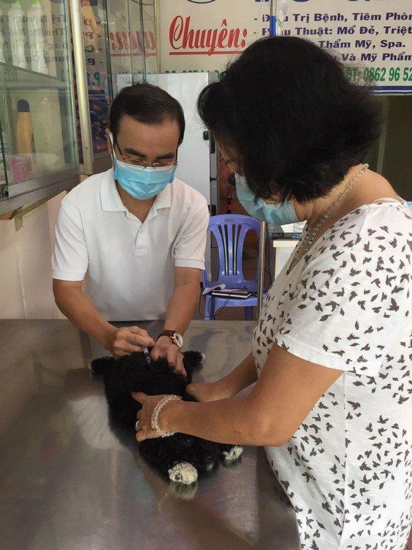 Droit Hồ premier vaccin.