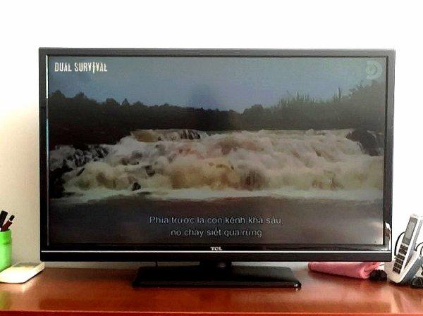 Télé pip'Hồ.