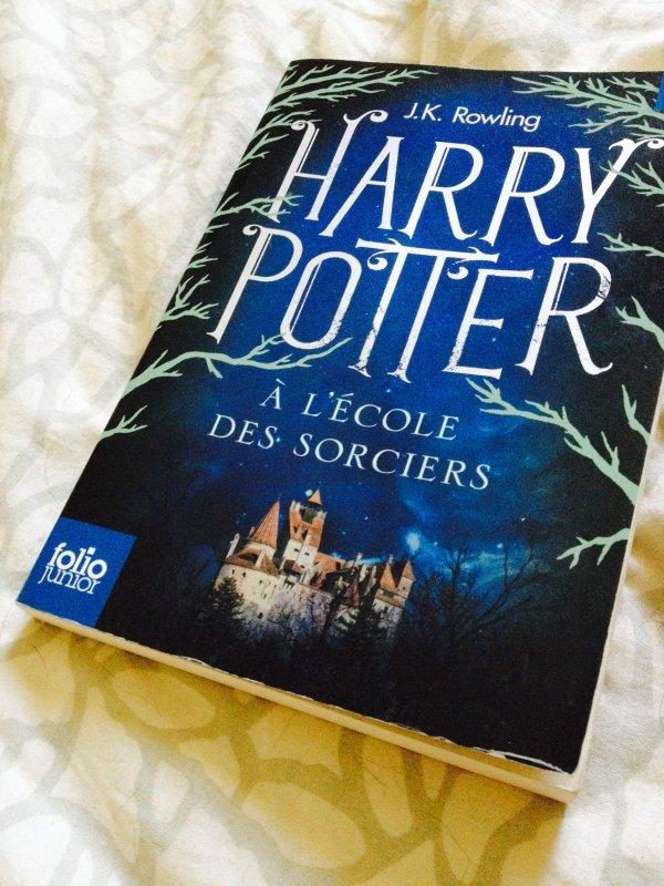 Chronique : Harry Potter à l'école des sorciers