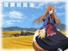 Presentation: Spice and wolf (Ookami to Koushinryou)
