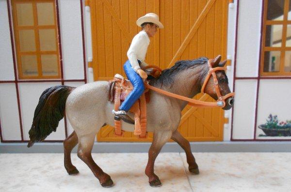 Un cheval nerveux .