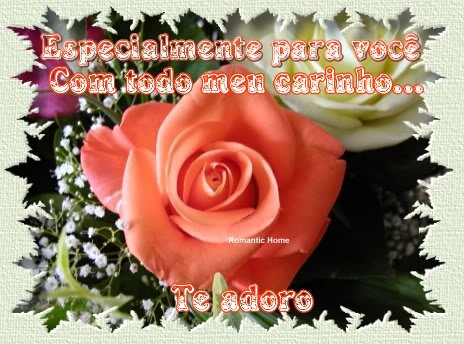 .Uma Flor,pela  sua Amizade:)