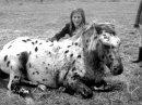Photo de Horse-f0rever-x3