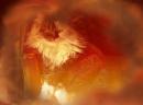 Photo de Cat-Cadeaux
