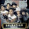 Dalmatian - Round 1 (2010)